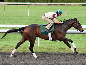 Newsdad works at Keeneland for the Bluegrass.
