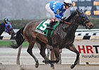 Nicole H Much the Best in Distaff Handicap