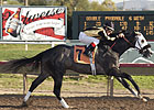 Ten Get Tested in El Camino Real Derby