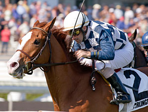 Nikki's Sandcastle wins the 2012 Sea O'Erin.
