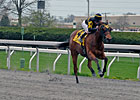 Ward Back for More in Ky. Juvenile