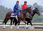 Turf Entrants Get Work Over Santa Ani