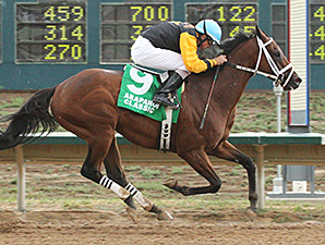 No Spin wins the Arapahoe Park Classic.
