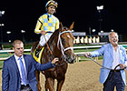 Noble Bird Pointing to Oaklawn Handicap