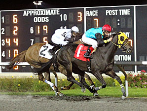 Noble Charlotte wins the 2012 H.B.P.A. Stakes.