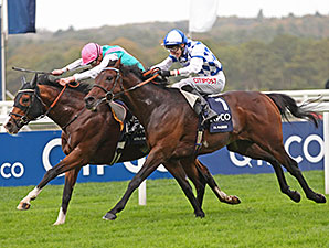 Noble Mission wins the 2014 Qipco Champion Stakes.