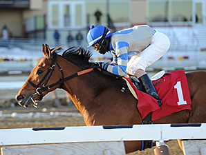 Noble Moon Full of Classic Promise