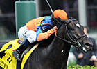 Noble Tune Skims Hedge to Grab American Turf