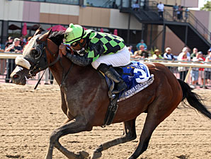 Norman Asbjornson wins the 2013 Roanoke Stakes.