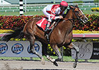 Normandy Invasion Sets Track Record in Return