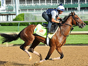 Normandy Invasion Will Skip Preakness