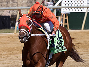 Northpoint Costas wins the 2010 Maryland Million Starter.