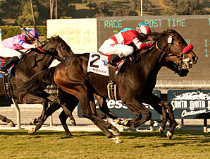 Norvsky wins the 2011 California Cup Classic.