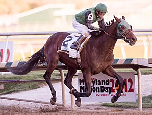 Not Abroad wins the 2012 Maryland Million Classic.