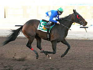 Neggets Please wins the Johnie L Jamison Stakes.