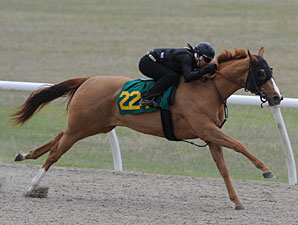 OBS Combines February, March Sales for 2011