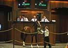Downturns at OBS Spring Sale Are Moderate 