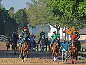 Harlan's Holiday Colt Posts Swiftest OBS Work