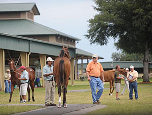 Bernstein Colt Sells for $300,000 at OBS