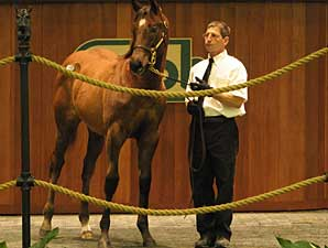 OBS Mixed Sale Ends With Big Downturns