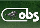 OBSC August Yearling Sale Catalog Posted