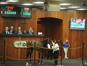 White Lamb Sells for $550,000 at OBS