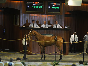 Ado Tops Exciting Day at OBS March Sale