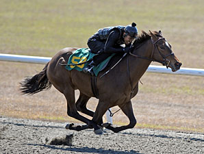 Six Juveniles Share Top Time at OBS Preview