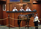 $1.4 Million Bernardini Colt Paces OBS Opener