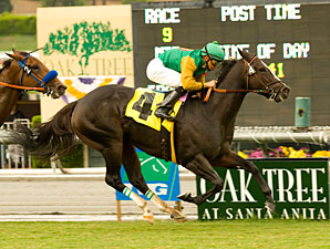 Santa Anita Adds New Wrinkle to Oak Tree Mess