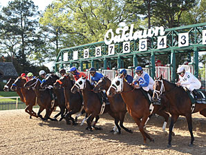 Mother Nature Provides Boost to Oaklawn
