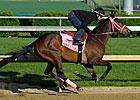 Three Work at Churchill in Advance of Oaks