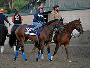 Obviously - 2013 Breeders' Cup, October 29, 2013