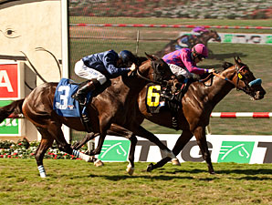 Obviously Breaks Course Mark in Del Mar Mile