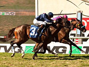 Obviously wins the 2012 Del Mar Mile.