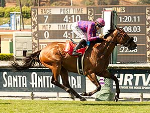 Obviously wins the 2014 Shoemaker Mile.
