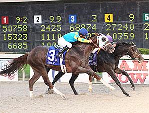 Horse Racing Horse Racing Entries Horse Racing Results