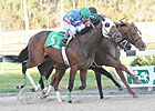 Small Field Seen for Keeneland's Blue Grass