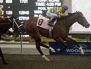 Oh Canada wins the 2011 Woodstock Stakes.