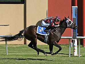 Okie Nova wins the Ladiesonthe Lawn Stakes.