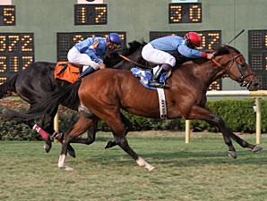 Old Bushmill wins the 2011 LA Cup Turf Classic.