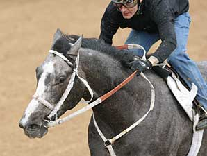 Old Fashioned breezes at Oaklawn Park on March 8