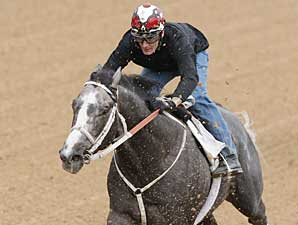 Old Fashioned works under Terry Thompson at Oaklawn Park on March 8