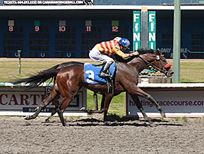 Ole's Miss wins the 2014 Emerald Downs Handicap.