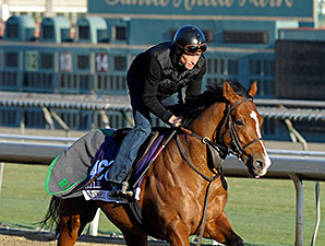 Olympic Glory - 2013 Breeders' Cup, October 30, 2013.