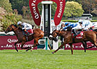 Juveniles Shine on Arc Undercard