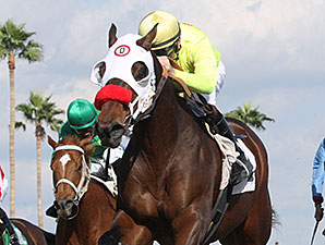 Omar wins the 2014 Caballos Del Sol Stakes.