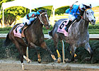 On Fire Baby Scorches Apple Blossom Foes