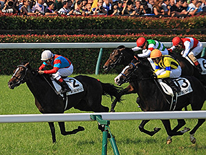 One and Only Bests Favorite in Japanese Derby