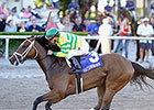 Onlyforyou Euthanized After Training Accident